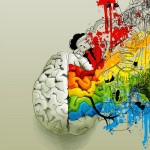 Kristin Gallant color-creative-ideas-design-illustration-brain-colorful-7c6fc3d21551e01f7804e2e675f2a63e-h