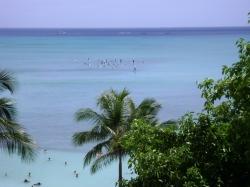 Oahu June 20 2012 001