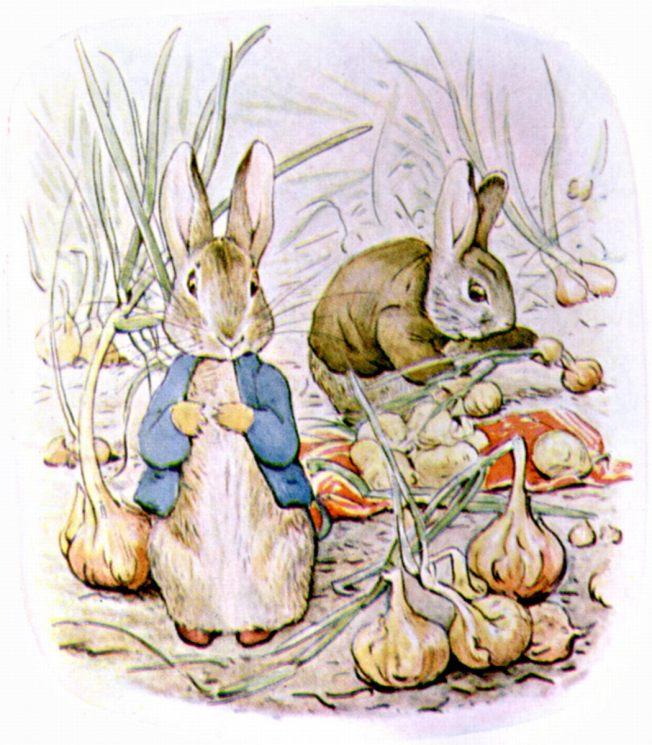 Benjamin_bunny_onions public domain