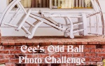 Cee's Odd Ball Photo Challenge: 2016 Week 52