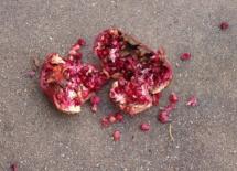 A pomegranate suffers a violent fate.