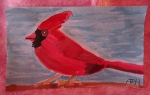 ICAD Day 38: The Cardinal