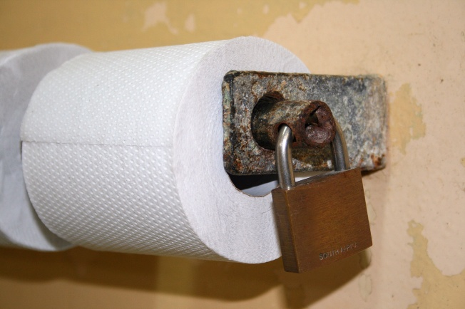 secured-toilet-rolls