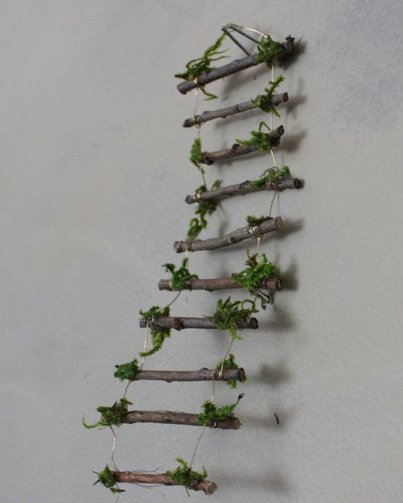 fd-ladder