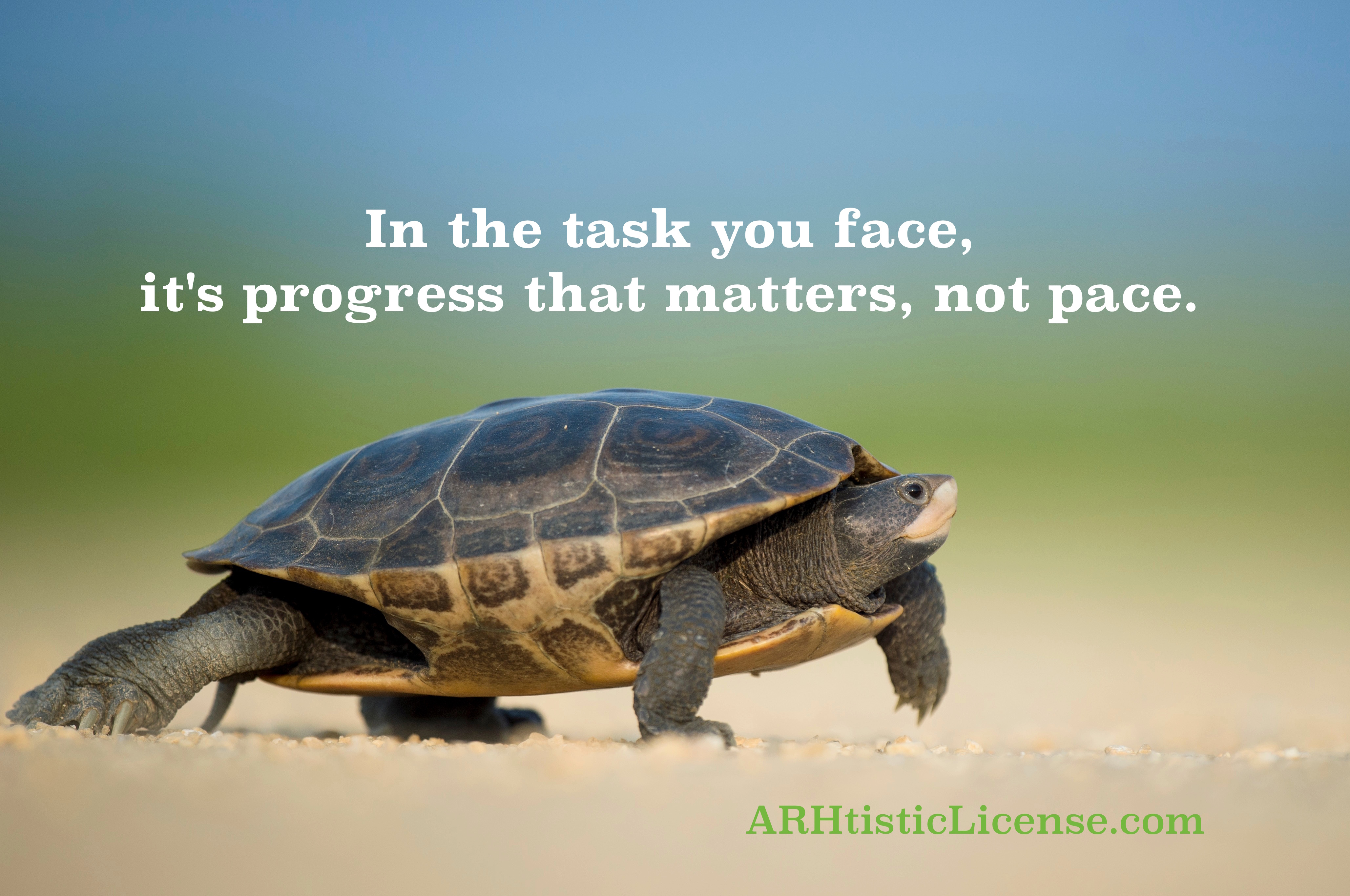 The Pace of Progress