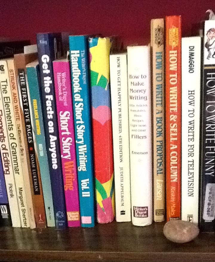 Essay on my bookshelf