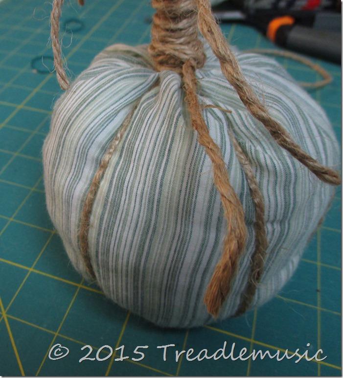 Shirt sleeve pumpkin 016