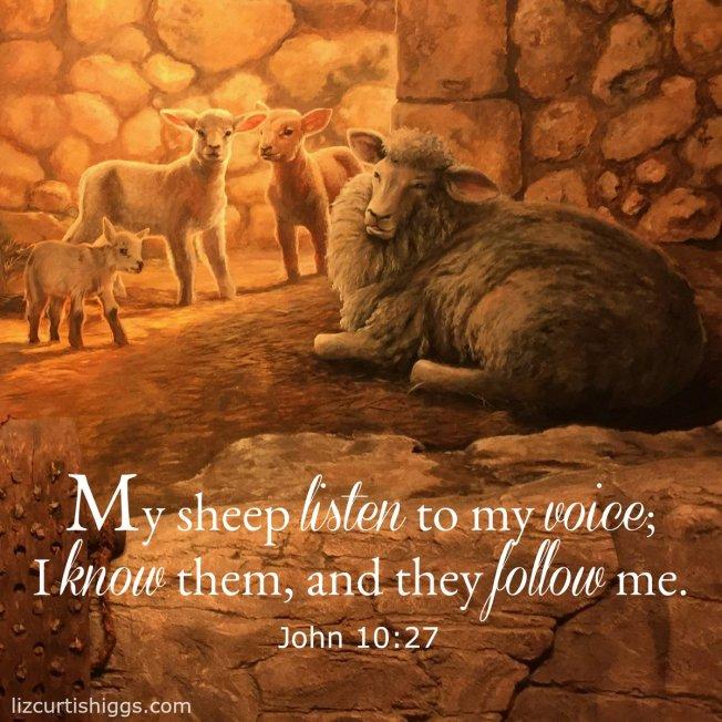 John 10-27
