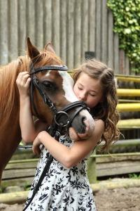 pony-2595144_640