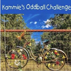 Kammie's Oddball Challenge