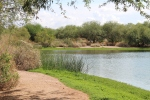 Veterans Oasis Park, Chandler, Arizona